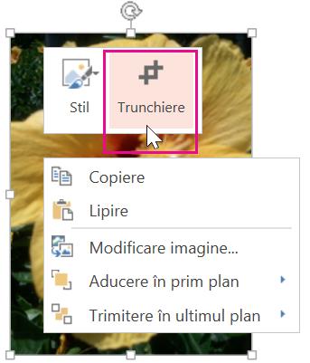 Faceți clic dreapta pe imagine, apoi faceți clic pe Trunchiere