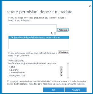 Imagine a dialogului Setarea permisiunilor pentru Depozitul de metadate în BCS din SPO.