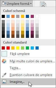 Captură de ecran cu opțiunea de Umplere cu imagine din Umplere formă, de la fila Formatare în Publisher.