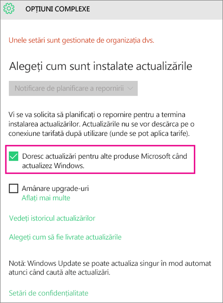 Opțiuni complexe Windows Update