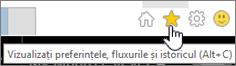 Butonul Internet Explorer flux