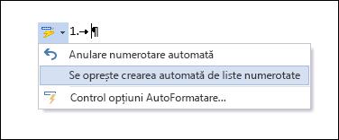Opțiunile Numerotare sunt afișate în Corectare automată.