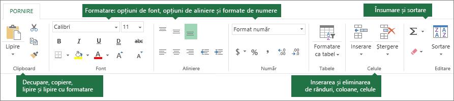 Fila Pornire cu butoanele de formatare pentru decupare, copiere, lipire; opțiuni de formatare precum fonturi, aliniere și formate de numere; Inserarea de rânduri/coloane; Însumare și sortare