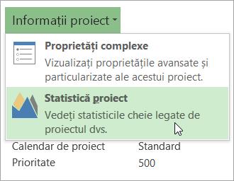 Opțiuni pentru informațiile despre proiect