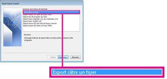 Opțiunea Export în fișier din Expertul import și export
