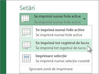 Sub Setări, faceți clic pe Se imprimă tot registrul de lucru