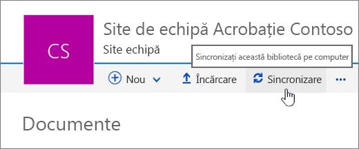 Titlu de bibliotecă de documente cu opțiunea Sincronizare selectată