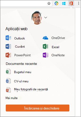 Faceți clic pe extensia Office Online în bara de extensii de Chrome pentru a deschide panoul Office Online.
