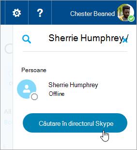 Captură de ecran a casetei de căutare în panoul Skype