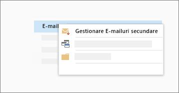 Captură de ecran conceptuală a funcției e-mailuri secundare