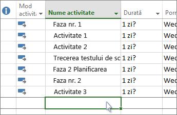 O listă de activități în Diagrama Gantt.