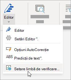 Pe fila Revizuire, faceți clic pe Corectare ortografică > Setare limbă de verificare