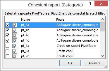 Slicer raport conexiuni din Slicer instrumente > Opțiuni