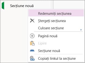 Opțiunea Redenumire secțiune în OneNote Online.