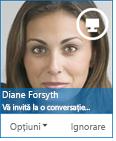 Captură de ecran a casetei de dialog pentru solicitarea de mesaj instant