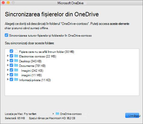 Captură de ecran a meniului de configurare OneDrive pentru selectarea folderelor sau fișierelor de sincronizat.