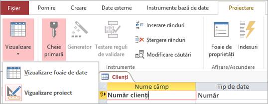Comutați proiectantul de tabele între vizualizarea foaie de date și vizualizarea proiect