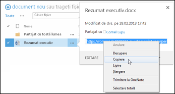 Adresa URL a unui document SharePoint în explicația documentului