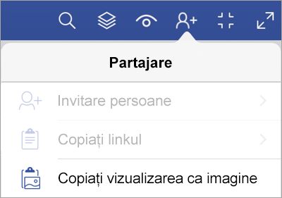 Opțiuni de partajare în Vizualizator Visio pentru iPad