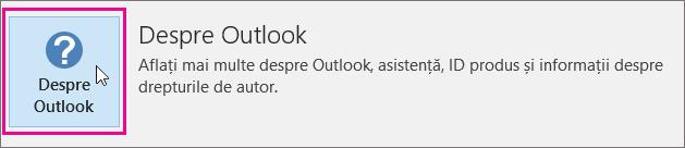 Închideți caseta Despre Outlook.