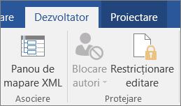 Pe fila dezvoltator, în grupul protejare, faceți clic pe restricționare editare