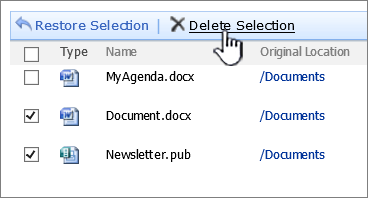 Caseta de dialog Coșul de reciclare SharePoint 2007 cu Ștergere selecție evidențiată