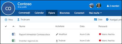 Faceți clic pe fișiere la nivel de grup Office 365 pentru a vedea lista de fișiere și foldere stocate în grupul