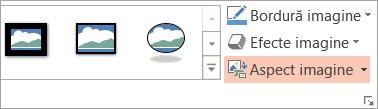 Afișează butonul aspectul de imagine pe fila formatare
