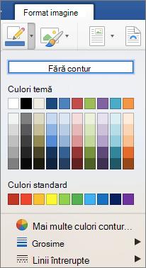 Culori contur pentru o bordură imagine sunt afișate.