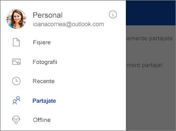 Vizualizarea partajată din OneDrive