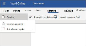 Document Word cu opțiuni cuprins afișate
