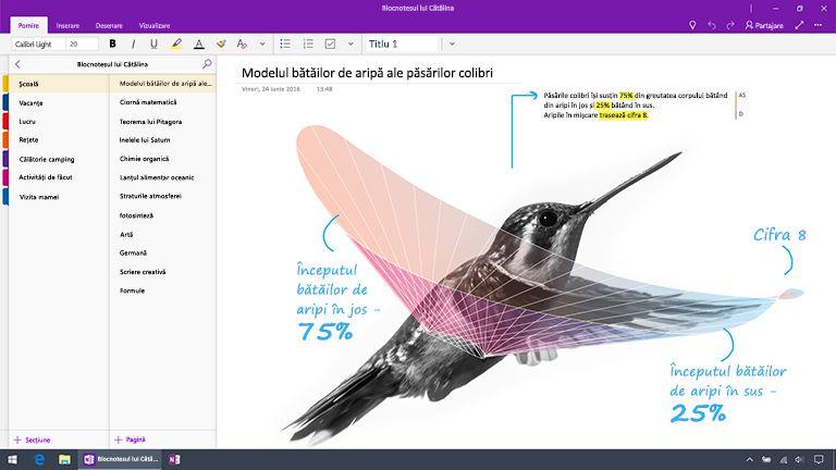 Captură de ecran cu OneNote pentru Windows 10