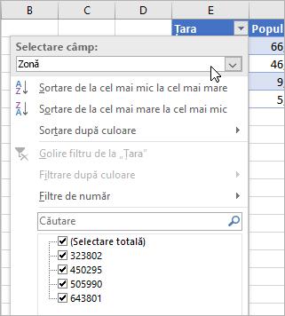 Meniul Filtrare, meniul Afișați valoarea, câmpuri din tipul de date legate listate