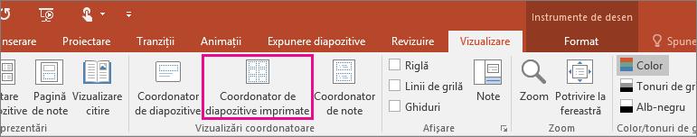 Afișează vizualizarea coordonatorului de diapozitive imprimate în PowerPoint