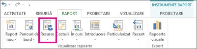 Butonul Resurse de pe fila Raport