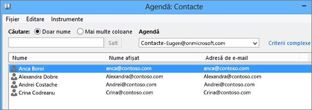 Atunci când persoanele de contact sunt importate din Google Gmail în Office 365, le veți vedea listate în Agendă: Persoane de contact
