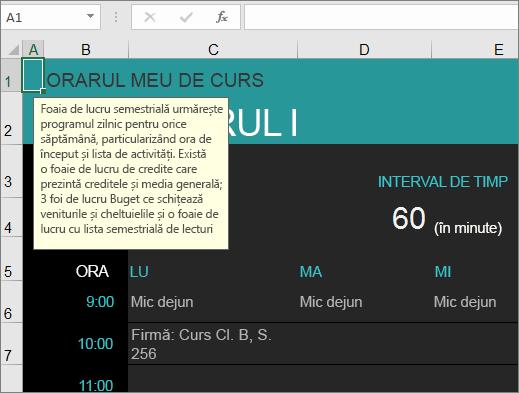 Șablonul Manager cursuri universitare Excel nou cu descrieri pentru elemente.