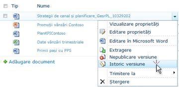 Lista verticală pentru un fișier SharePoint. Istoricul versiunilor este selectat.