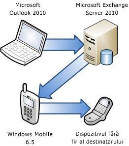 Conectarea telefonului la Exchange Server