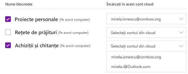 Blocnotesuri selectate pentru a fi încărcate într-un cont din cloud