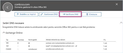 Captura de ecran afișează pagina Setări DNS necesare, iar butonul Verificare DNS este în prim-plan.