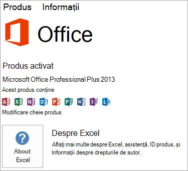 Instalarea Excel MSI