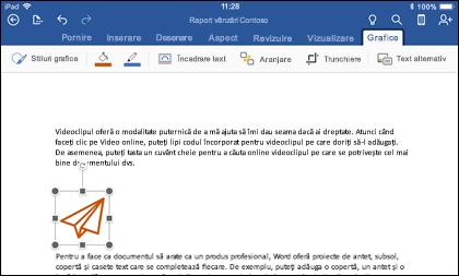 Word pentru iOS afișând fila Editare elemente grafice