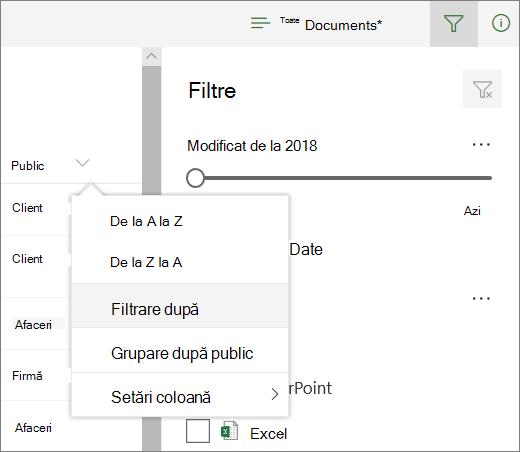 Faceți clic pe Filtrare după pentru a deschide panoul de filtrare