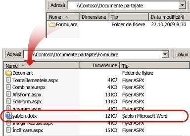 Conținutul folderul Formulare într-o bibliotecă de documente