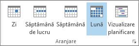 Grupuri de aranjare pe fila Pornire: zi, săptămână, săptămână de lucru, lună și planificare