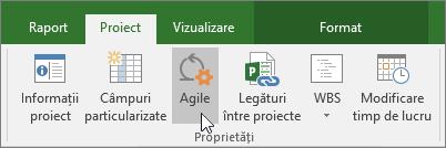 Captură de ecran a butonului Agile panglica proiect, fila proiect, secțiunea proprietăți