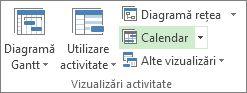 Fila Vizualizare, grupul Vizualizări activitate, butonul Calendar.
