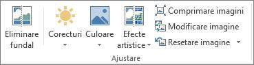 Opțiuni pentru imaginea în grupul ajustare