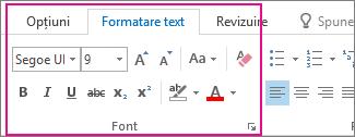 Format text despre panglică